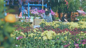 targi ogrodnicze wpracy projektanta