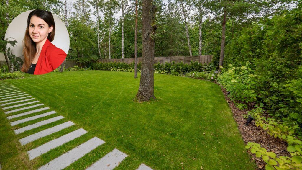 projektowanie i pielęgnacja trawnika
